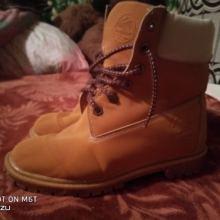 Зимние ботинки(тимбы) объявление продам