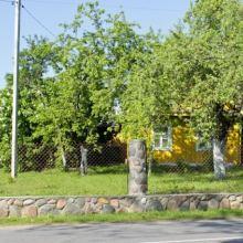 Дом на берегу озера Свирь, усадьба Набережная, Голубые озера объявление продам