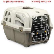 АРЕНДА ПРОКАТ Переноска для собак , кошек и крупных грызунов!!! (вес животного 10 кг), объявление услуга