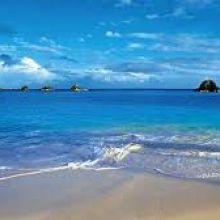 Отдых на море! Затока, отель «Таурус» объявление услуга