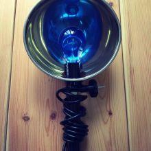 Синяя лампа напрокат объявление продам
