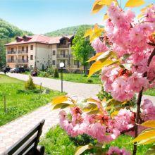 НОВИНКА: Недельный spa-тур в Закарпатье! объявление услуга