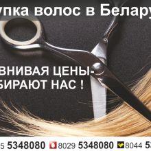 Купить волосы в Гомеле объявление куплю