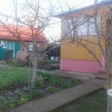 Квартира в деревне Орешковичи Пуховичский р-н, Минская обл объявление продам